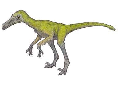 鳥に近い恐竜、ドロマエオサウル...
