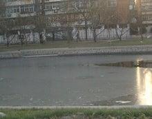 凍り始めの衛津河