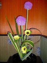 *今週の花*