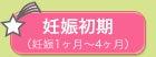 赤ちゃんとチワワたまに嵐 【不妊から妊娠ブログ】