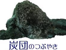 炭団のつぶやき