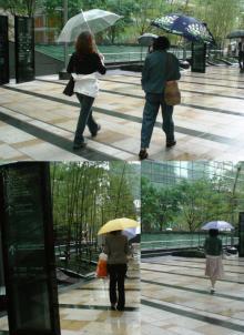 雨の中... 私以外の美女のうしろ姿を公開^.^゛