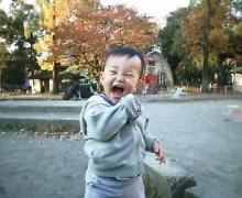 公園も紅葉がきれい!