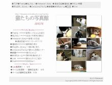 猫たちの写真館