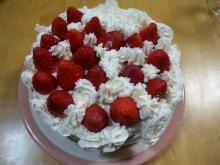 主婦アフィリエイターすずの裏ブログ-紗香作・クリスマスデコレーションケーキ