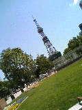 テレビ塔 大通公園 060630