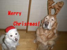 Mrs.Luckyのラッキー・チャ・チャ・チャ!-幸せな日♪ Happyクリスマスでした^^