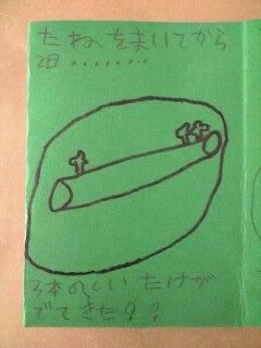 「ひろんぐー」の つぶやき @名古屋-しいたけ2
