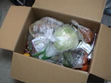 日記/食料支援物資_02