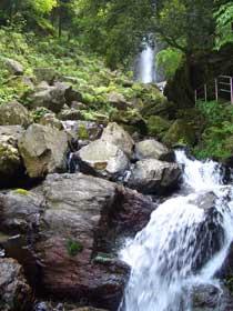 養老の滝②