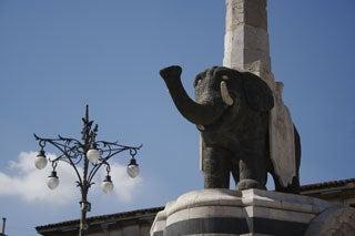 カターニャの象