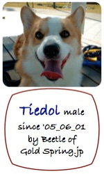 Tiedol_p