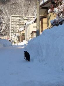 '06-山形雪道9