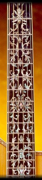 harp guitar 02