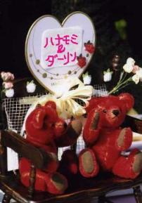 welcom bears