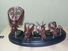 toriceratops2