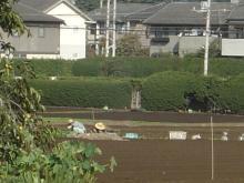 都市近郊の農作業風景!