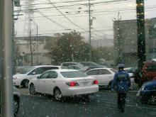 名古屋で雪