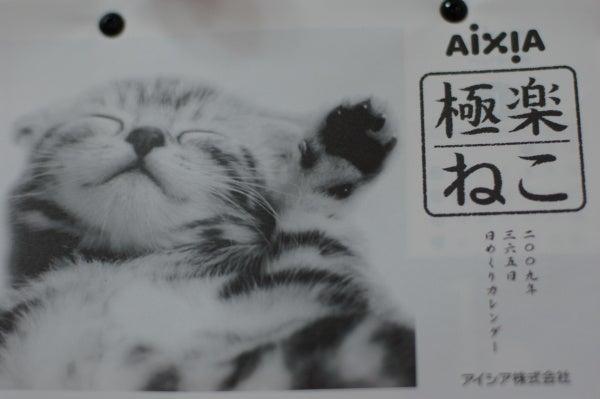 ゆきちゃんの成長記録-カレンダー