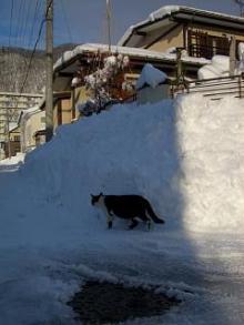 '06-山形雪道8