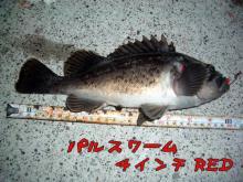 2006326