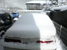 上賀茂からこんにちは。-雪跡・・・