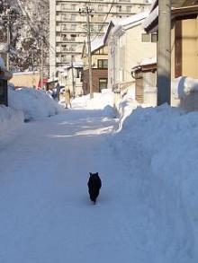 '06-山形雪道10