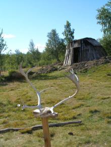 swedn005