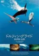 Dolphin Glide