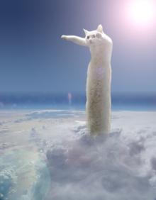 のびる猫伝説⑧
