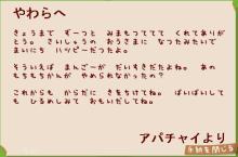 アパチャイの手紙