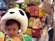 パンダ被り物
