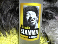 0620_slamma