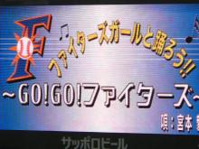 GOGOファイターズ