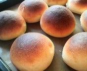 丸パンばっか作ってる。