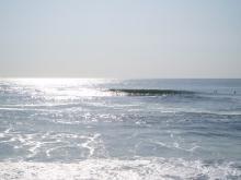 fukushimawave