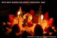 lagop's birdscape blog-X'mas Card 2008 (cake)