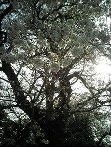 2008-03-26_08-39.jpg