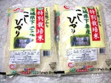 kasumi2008