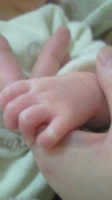 のほほんにっき☆~ひよっ娘SE&ママの日々~-200902071136001.jpg