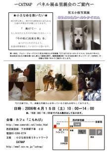 4.15-16パネル展&里親会