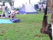 さるとテント
