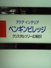 V6010546.JPG