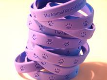 2005 Animal Rescue Site Anniversary Bracelet
