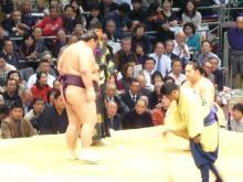 kaio-sayonara