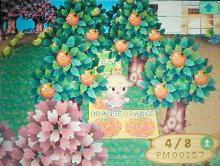 桜祭り12