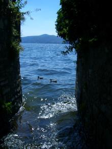 小道から湖を眺める