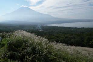 秋の絶景富士ススキ