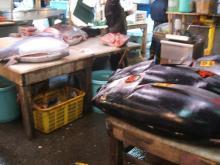 flighty life-tsukiji9