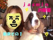 ジャスミン☆